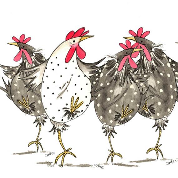 Bouillon de poules